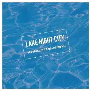 LAKE NIGHT CITY